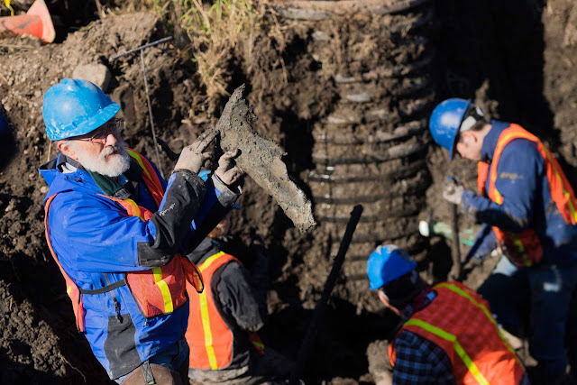More mammoth bones recovered from Michigan farm