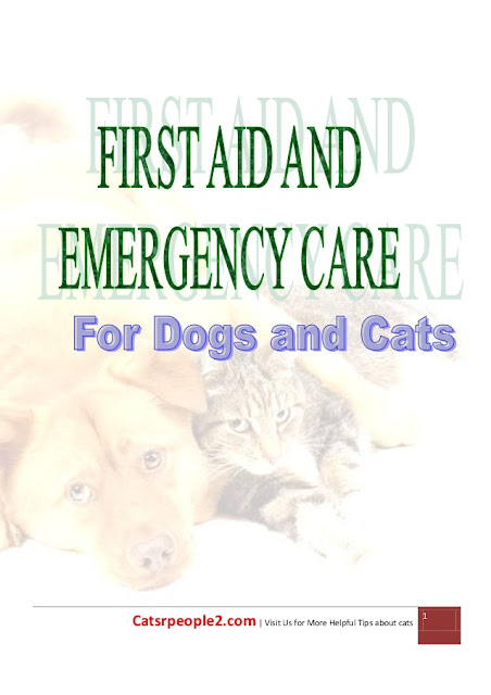 First Aid and-Emergency Care for Dogs and  Cats - WWW.VETBOOKSTORE.COM