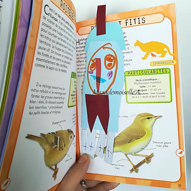 Petit guide de poche - Les oiseaux des jardins