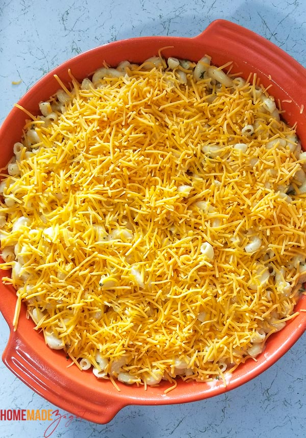 Uncooked macaroni pie with shredded cheese layering