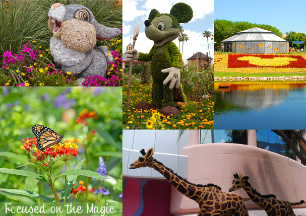 Epcot International Flower and Garden Festival, Focused on the Magic