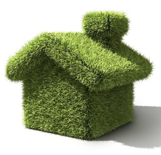 design Ter uma casa verde
