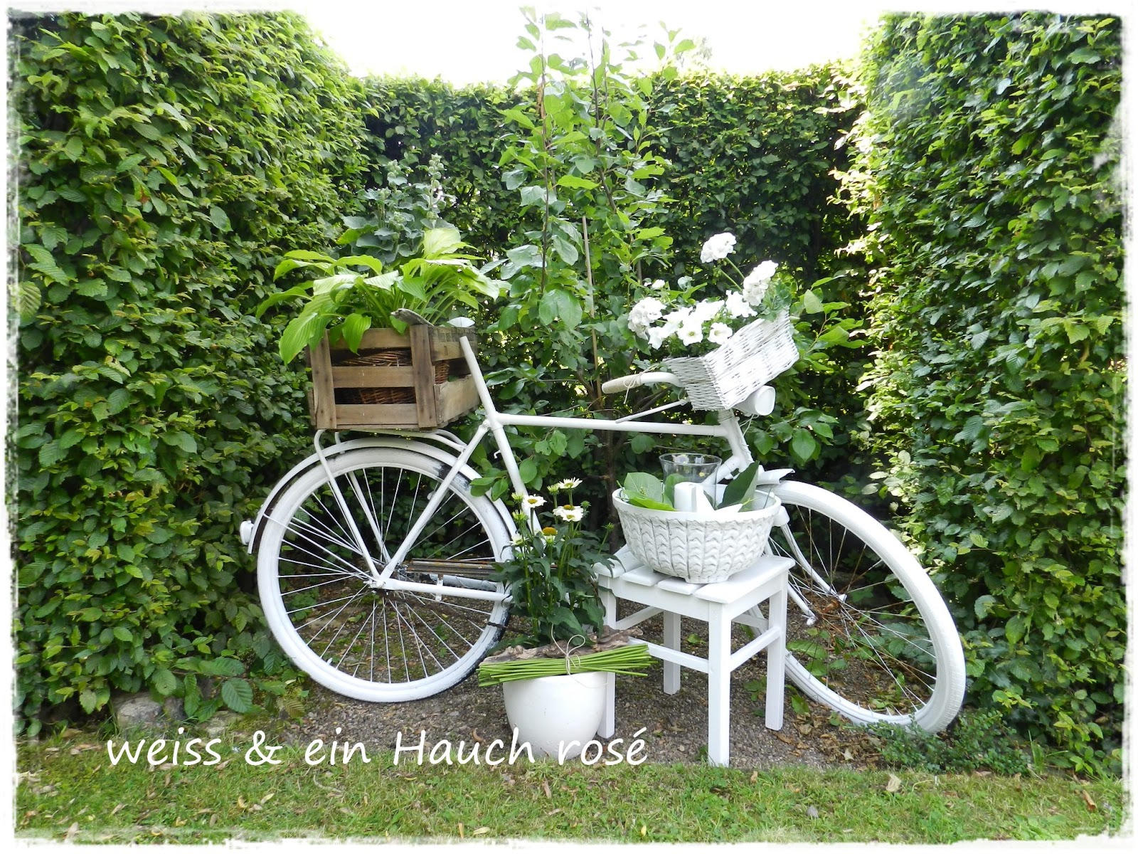 wei ein hauch ros fahrrad trifft blumen. Black Bedroom Furniture Sets. Home Design Ideas