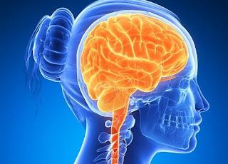 Como desarrollar y aumentar el poder de la mente