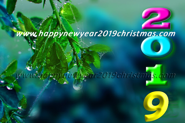 happy new year 2019 images gif
