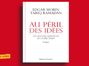 Télécharger : Au péril des idées en pdf