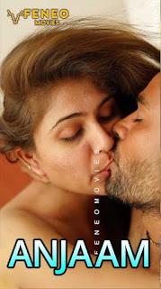 Anjaam (2020) Season 1 Episode 1 FeneoMovies Download & Watch