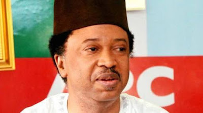 Senator Shehu Sani's Group Dumps APC, Gives Reasons