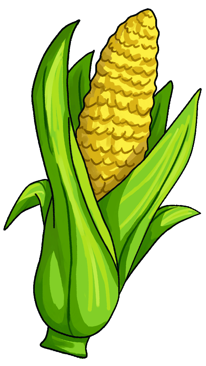 15 surprising corn clipart for free fruit names a z with corn clip art step corn clip art kids