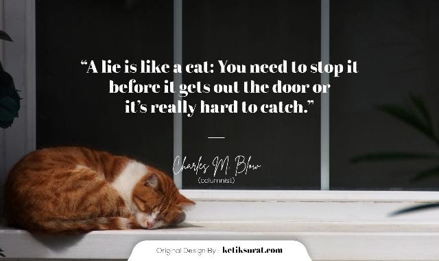 kata mutiara bahasa inggris tentang kucing dan artinya