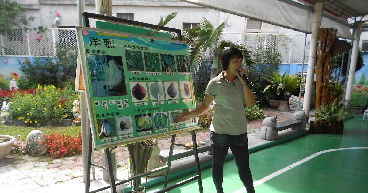 和平幼兒園部落格: 生態教學-洋蔥