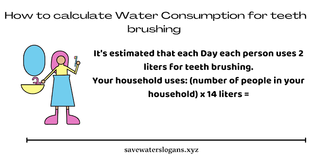How to calculate Water Consumption for teeth brushing ?