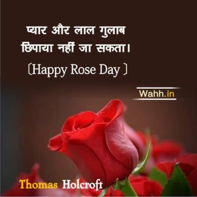 Short Rose Day Quotes  In Hindi