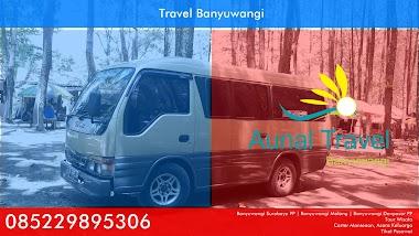 Travel Banyuwangi - Wisata Pinus Songgon