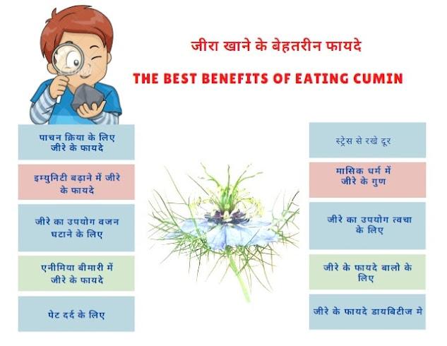 जीरा खाने के फायदे और नुकसान | Benefits of Cumin in hindi
