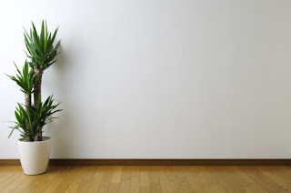 Image of a blank wall that can be used for home workouts.