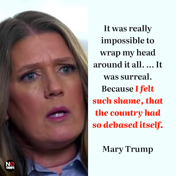 It was really impossible to wrap my head around it all. ... It was surreal. Because I felt such shame, that the country had so debased itself. — Mary Trump, former President Donald Trump's niece
