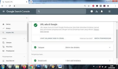 Cara Membuat Website Cepat Terindex oleh Google Search Console