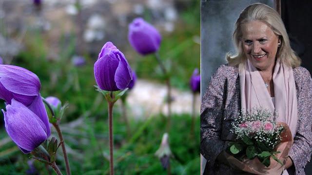 Ο Θεατρικός όμιλος Ερμιονίδας αποχαιρετά τη Μαράικε Ηλιού Ντε Κόνινγκ