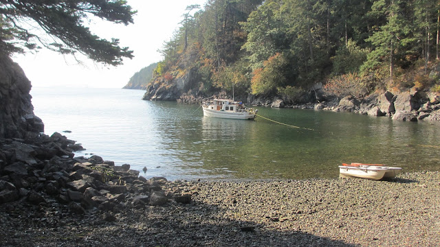 Kraken at Lummi Island Campground