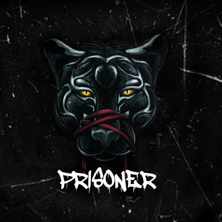"UNVEIL THE SENSE: ""Prisoner"""