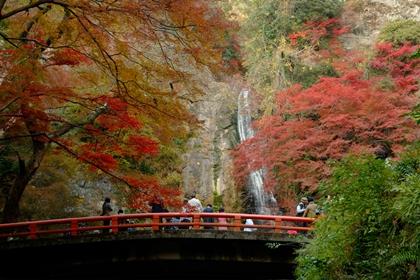 อุทยานมิโน (Minoo Park) @ www.osaka-info.jp