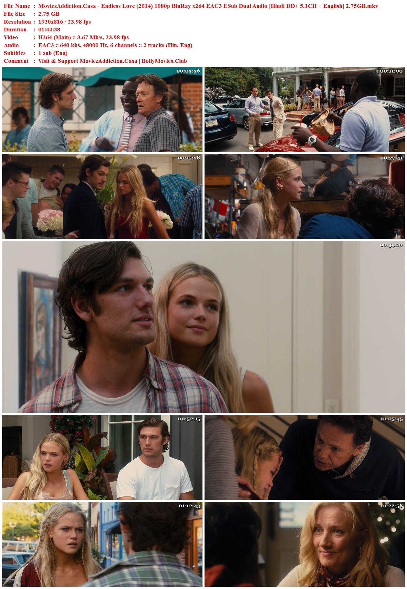Download Endless Love