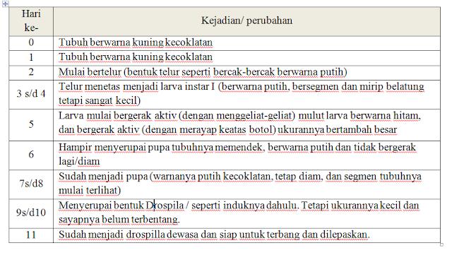 Laporan Praktikum Pertumbuhan dan Perkembangan Hewan (Praktikum IPA di SD)