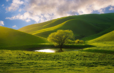 Attractive Nature Images