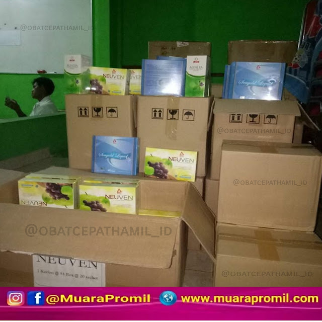 Jual Herbal Bee Di Malang