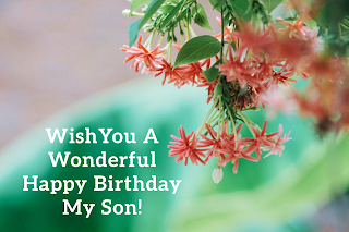 50 Best Happy Birthday Son wishes, HD images, status, SMS, quotes in English for WhatsApp free download,