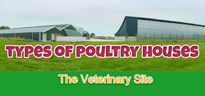 poultry-house-system-types
