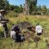 Trabajo de campo en Maullín - Verano 2020