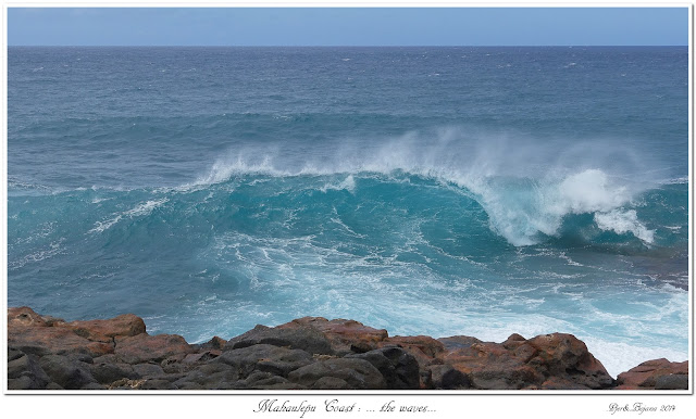 Mahaulepu Coast: ... the waves...