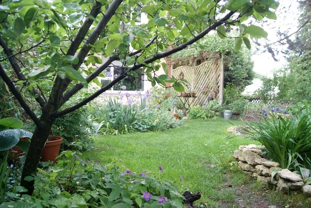 Blick in den Garten im Mai