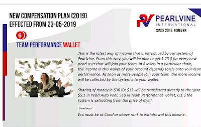 Team Performance Wallet