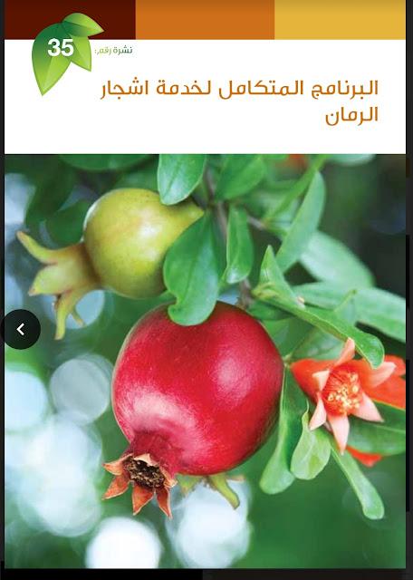 نشرة البرنامج المتكامل لخدمة اشجار الرمان.pdf