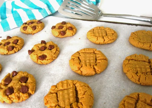 http://blog.dollhousebakeshoppe.com/2011/11/flourless-peanut-butter-chocolate-chip.html