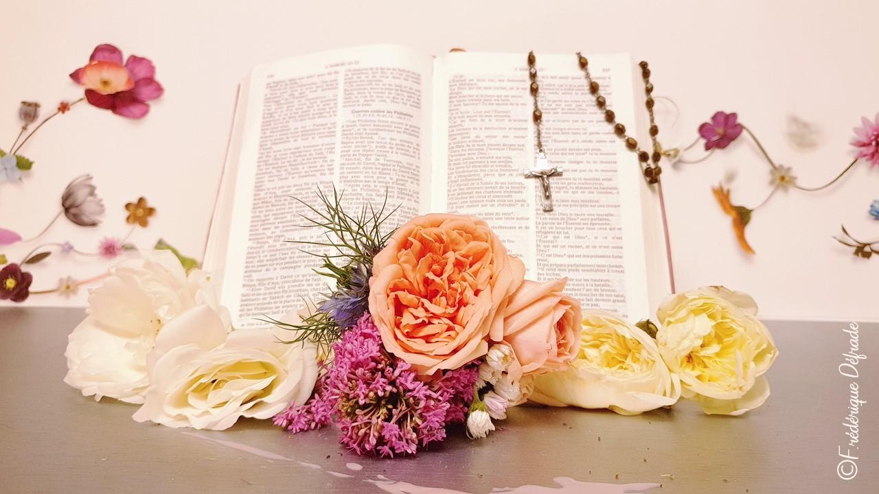 la bible ©frederique defrade