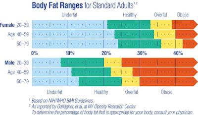 Body Fat - Komposisi Tubuh