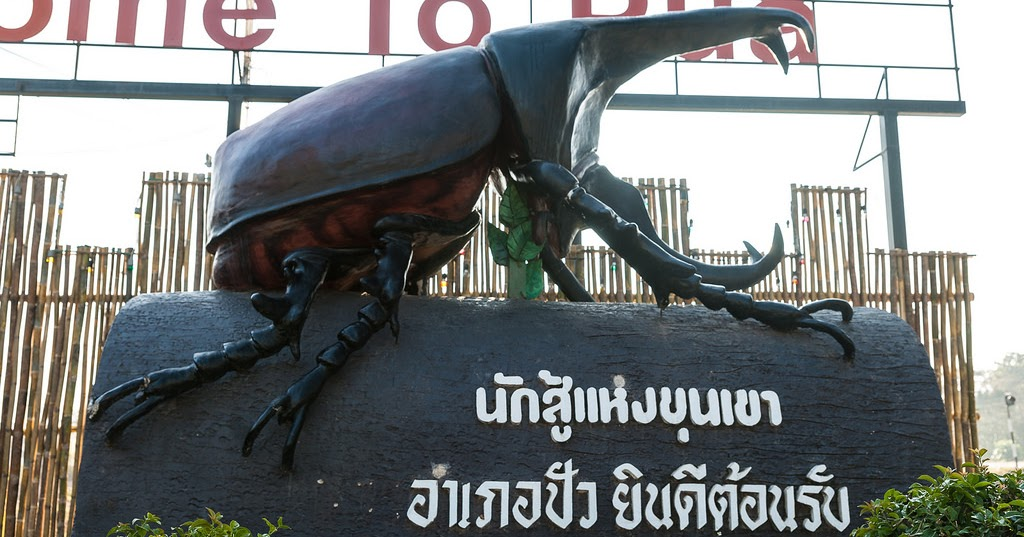 Pua Thailand  City new picture : ... Thailand: The Hercules Kwang Beetle Festival in Pua, North Thailand