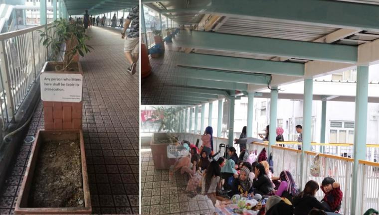 Viral Pot Bunga Berjejer Disepanjang Jembatan Mong Kok Tempat Lesehan BMI saat Libur