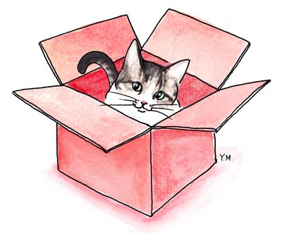 Cat in a box by Yukié Matsushita