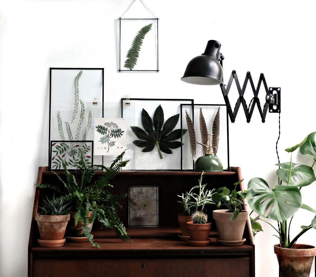 diy fleurs et feuillages sous verre. Black Bedroom Furniture Sets. Home Design Ideas