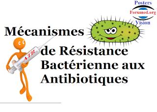 Mécanismes de résistance bactérienne aux antibiotiques: