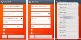 slow dns Premium Mod APK