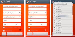 SlowDNS VPN Over DNS Tunnel Download Premium Mod APK