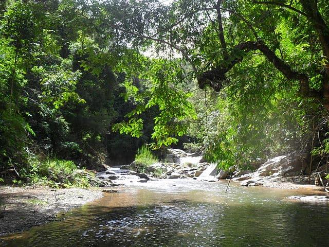 Vườn quốc gia Chưmomray - Kon Tum