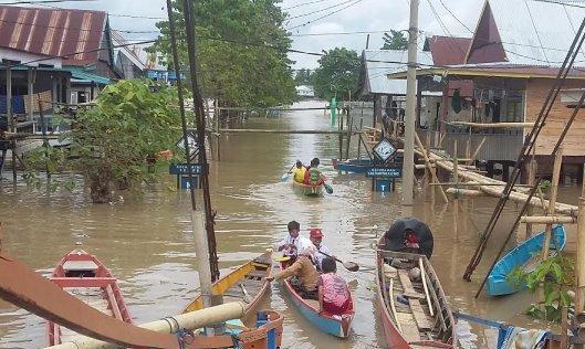 Banjir Di Kel. Salomanreleng, Wajo Capai 2,3 Meter