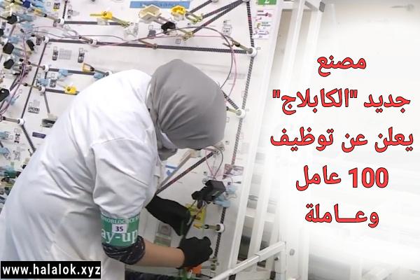 مصنع جديد للكابلاج يعلن عن توظيف 100 عامل وعاملة بسيدي قاسم